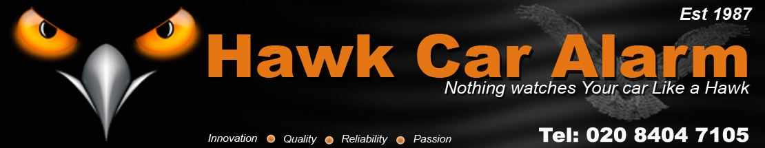 Hawk-inside-banner-(car)